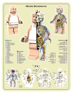 Jason Freeny Lego micro schematic illustration