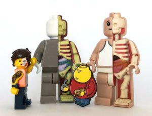 Lego minifigure, micro anatomic figures and Chunky Lego