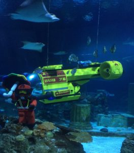 Can LEGO Go in an Aquarium – Creating Fish Fans of LEGO!