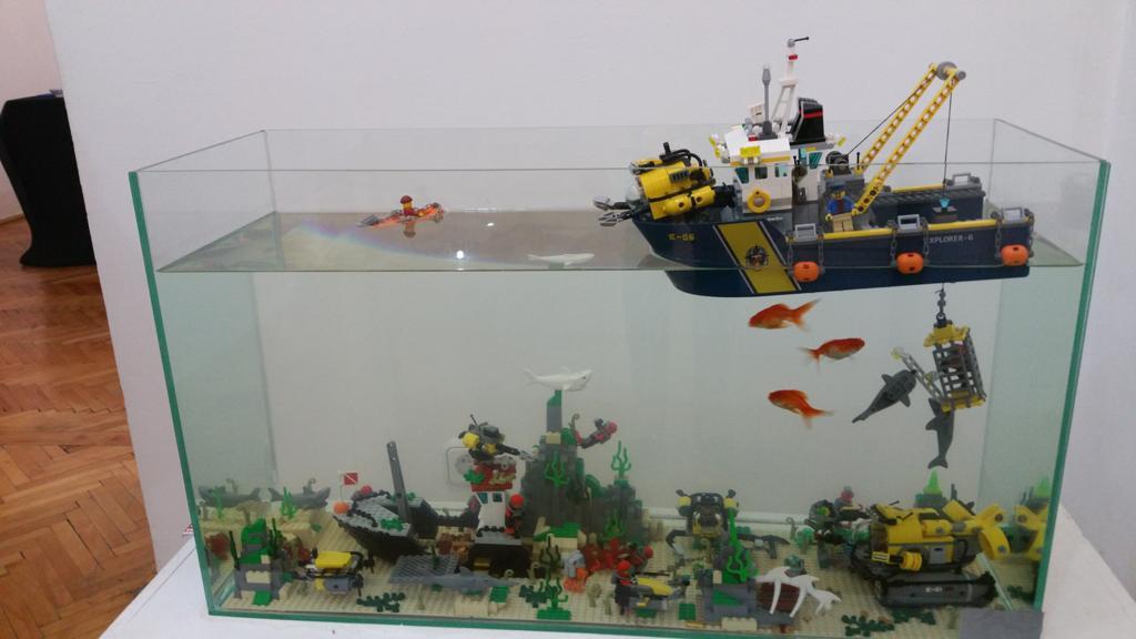 Felix Mezei aquarium