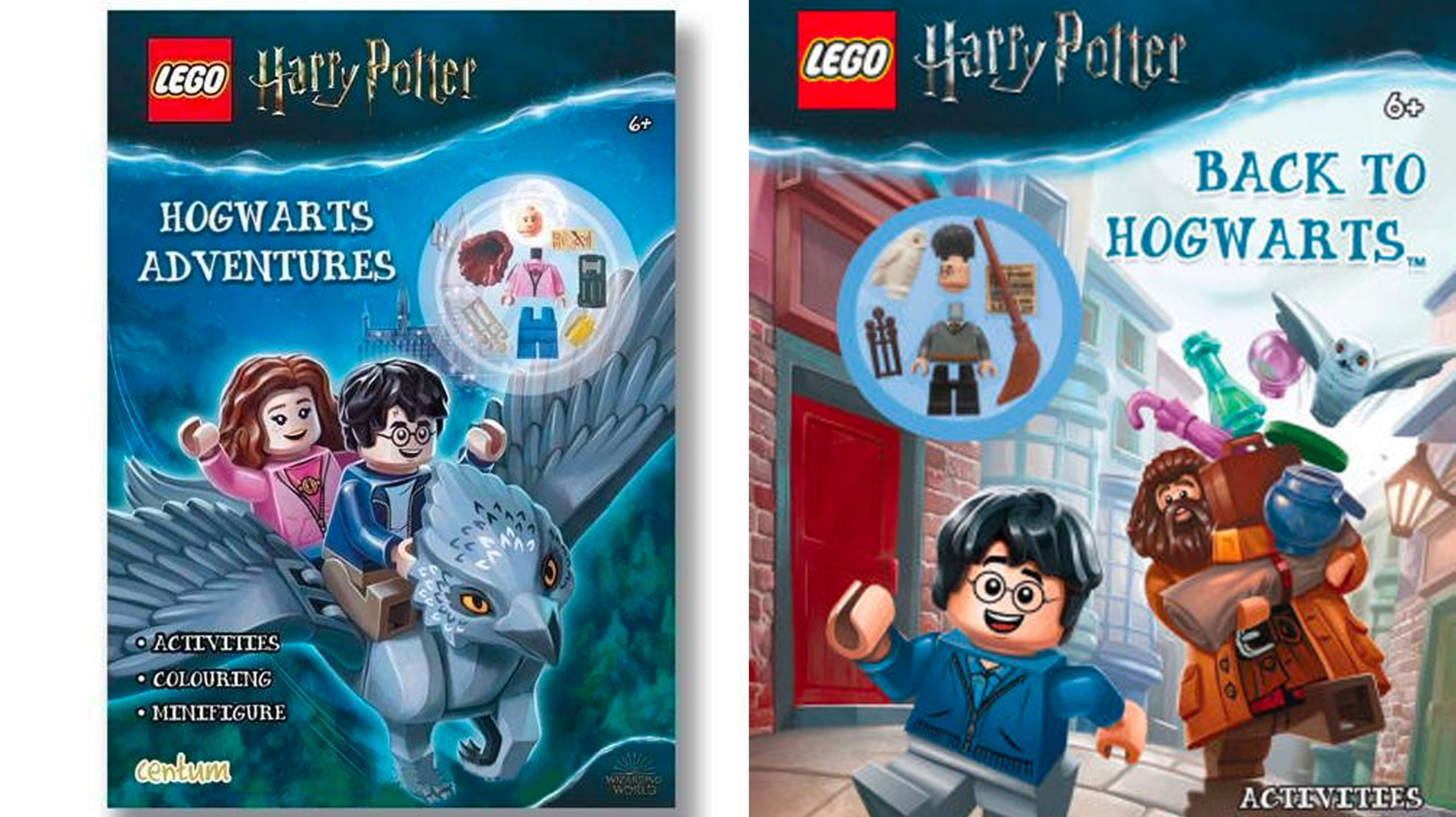 LEGO Harry Potter - Harry Potter and Hermione Books